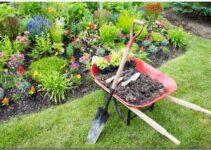 Biaya Pembuatan Taman Dan Cara Menghitungnya