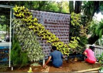 Jasa Pembuatan Taman Dan Harga Per Meter