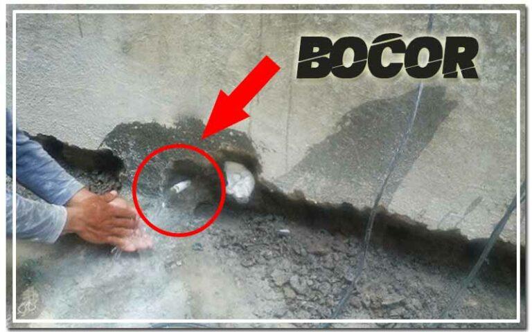 Kolam Ikan Bocor