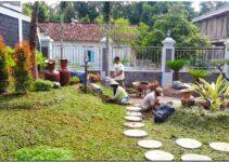 Membuat Taman Minimalis Sendiri Dirumah