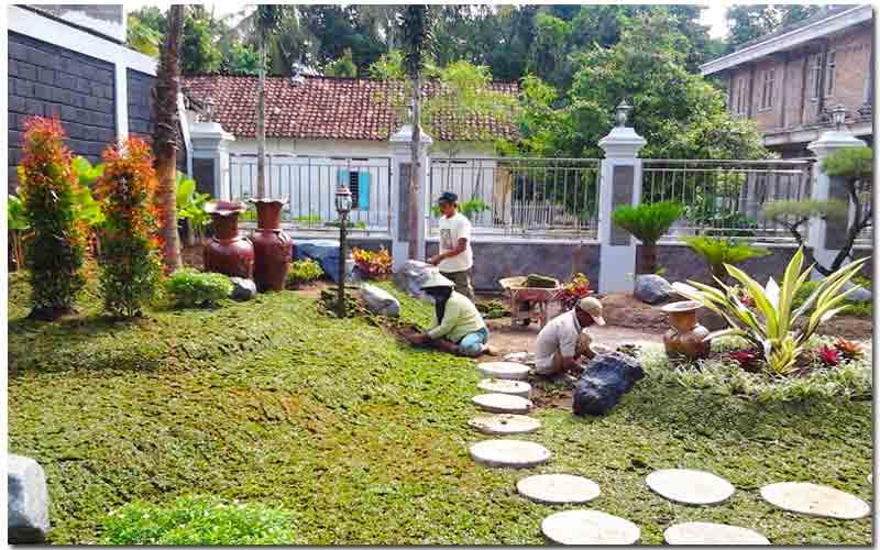 Membuat Taman Minimalis